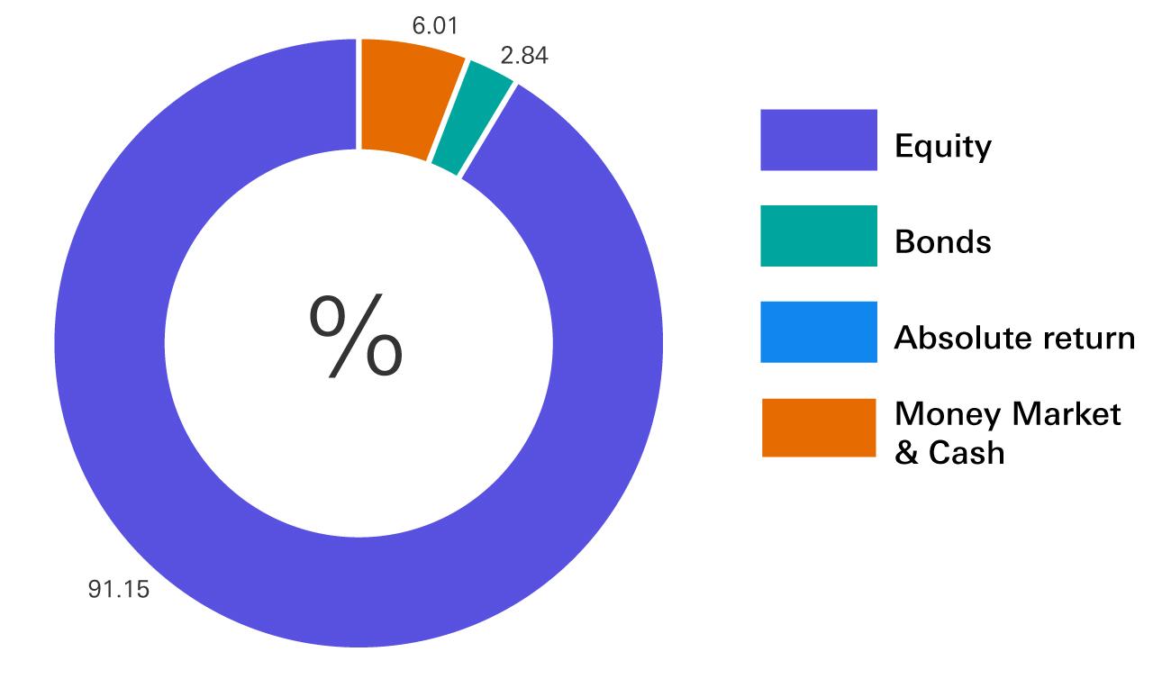 Equity 91.15%, Money Market & Cash 6.01%, Bonds 2.84%